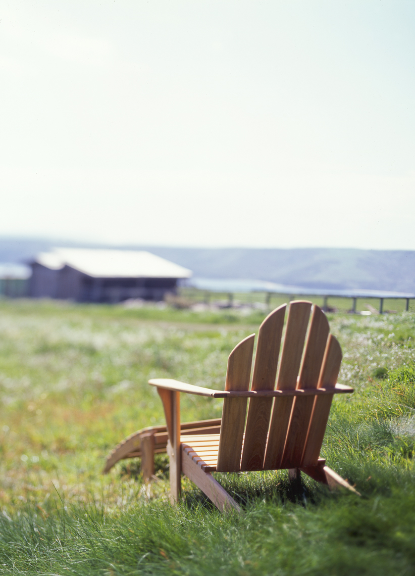Wood adirondack chair in tall grass with view