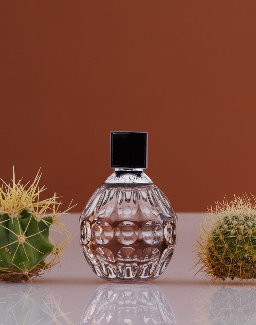 clear perfume bottle with 2 cacti with burnt orange background