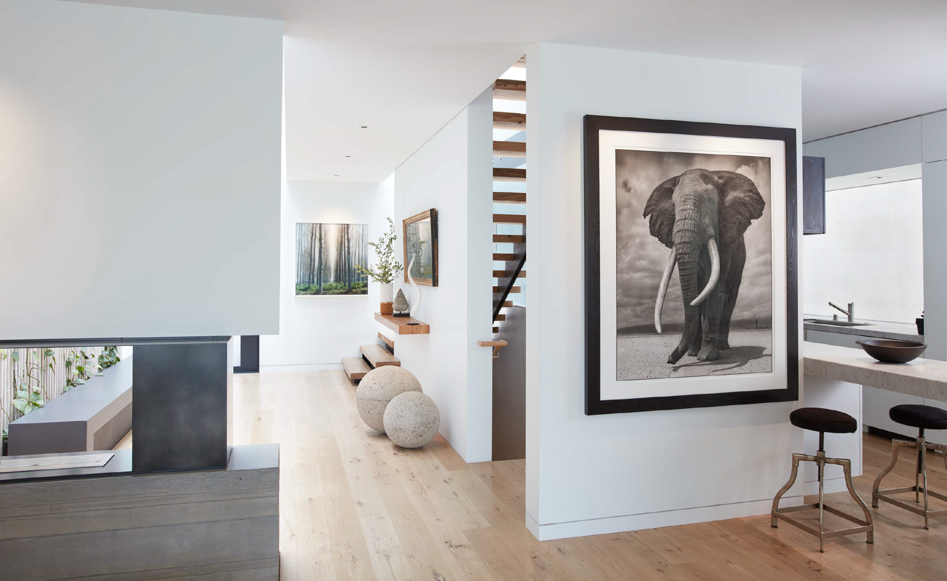interior of modern-art home with framed black and white elephant photograph