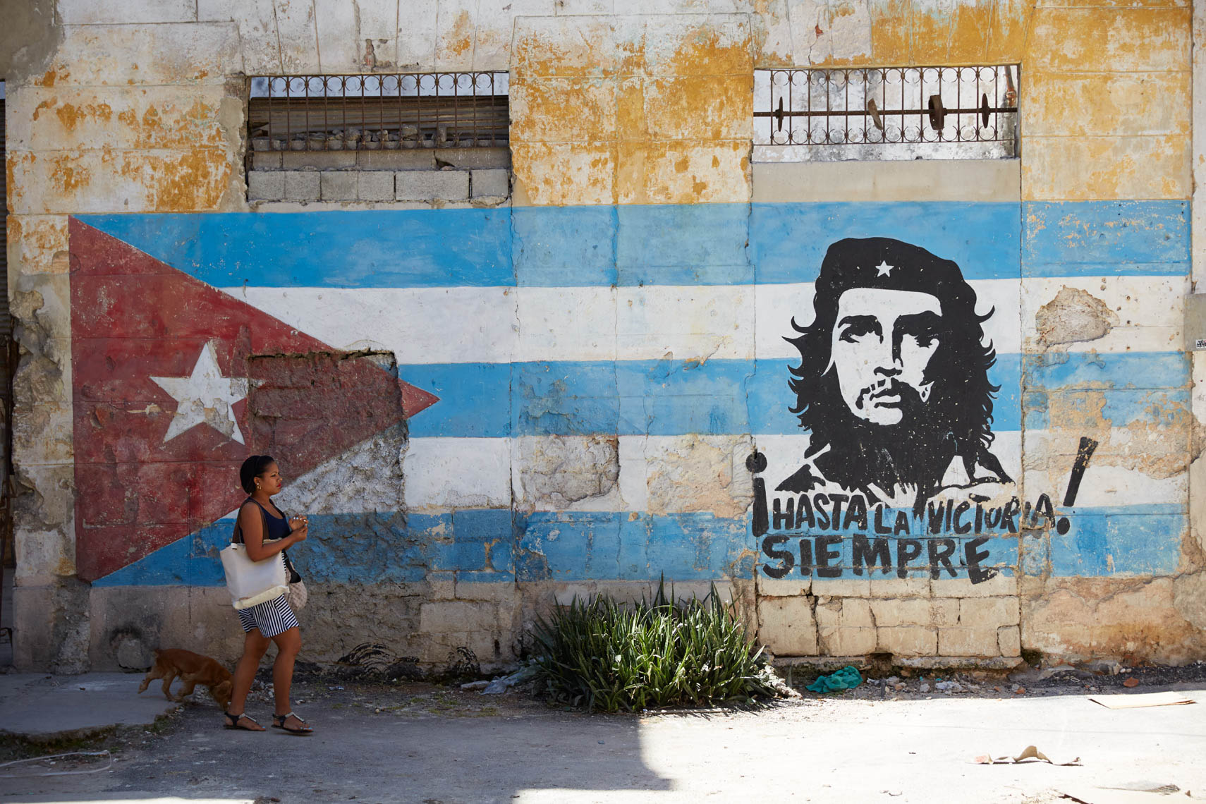 woman with dog walking past painting of Cuban flag on old wall with street art of Fidel Castro