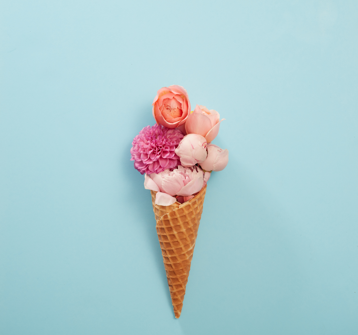 Flower ice cream cone on blue Philip Harvey Photography, San Francisco, California, still life, interiors, lifestyle and product photography San Francisco product photographer