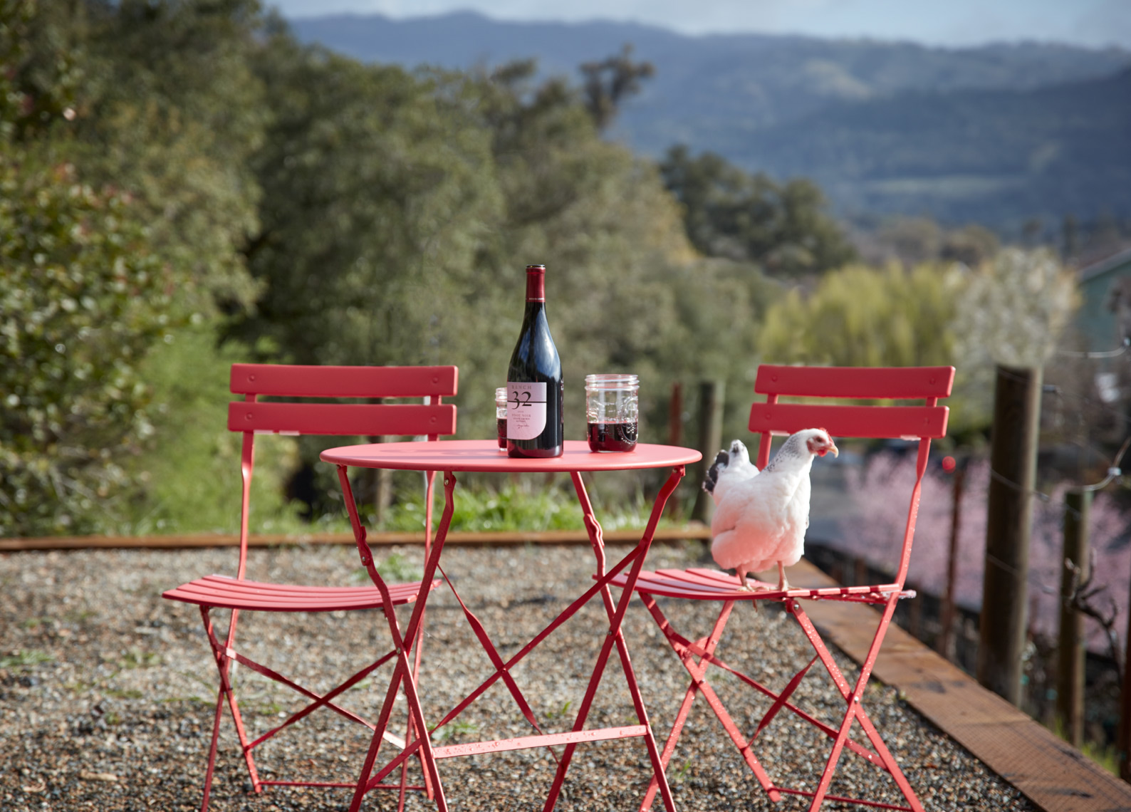 red cafe furniture with white rooster on chair and bottle with 2 glasses of wine San Francisco food photographer