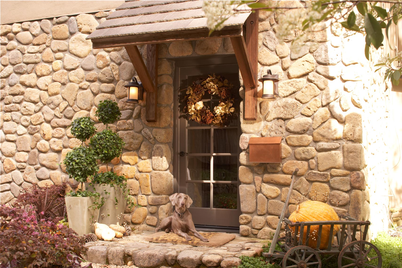 Stone home entryway with pumpkins and dog in Fall San Francisco lifestyle photographer