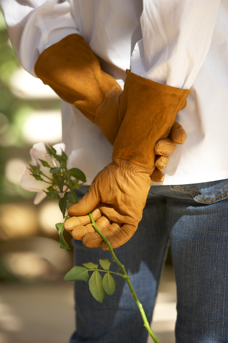 Gardener shown from behind with hands behind back wearing brown leather gloves holding flower