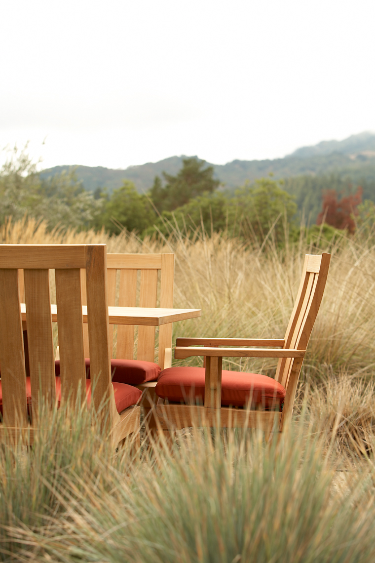 Low angle of teak chair with red cushion and dining table in tall grasses in wine country