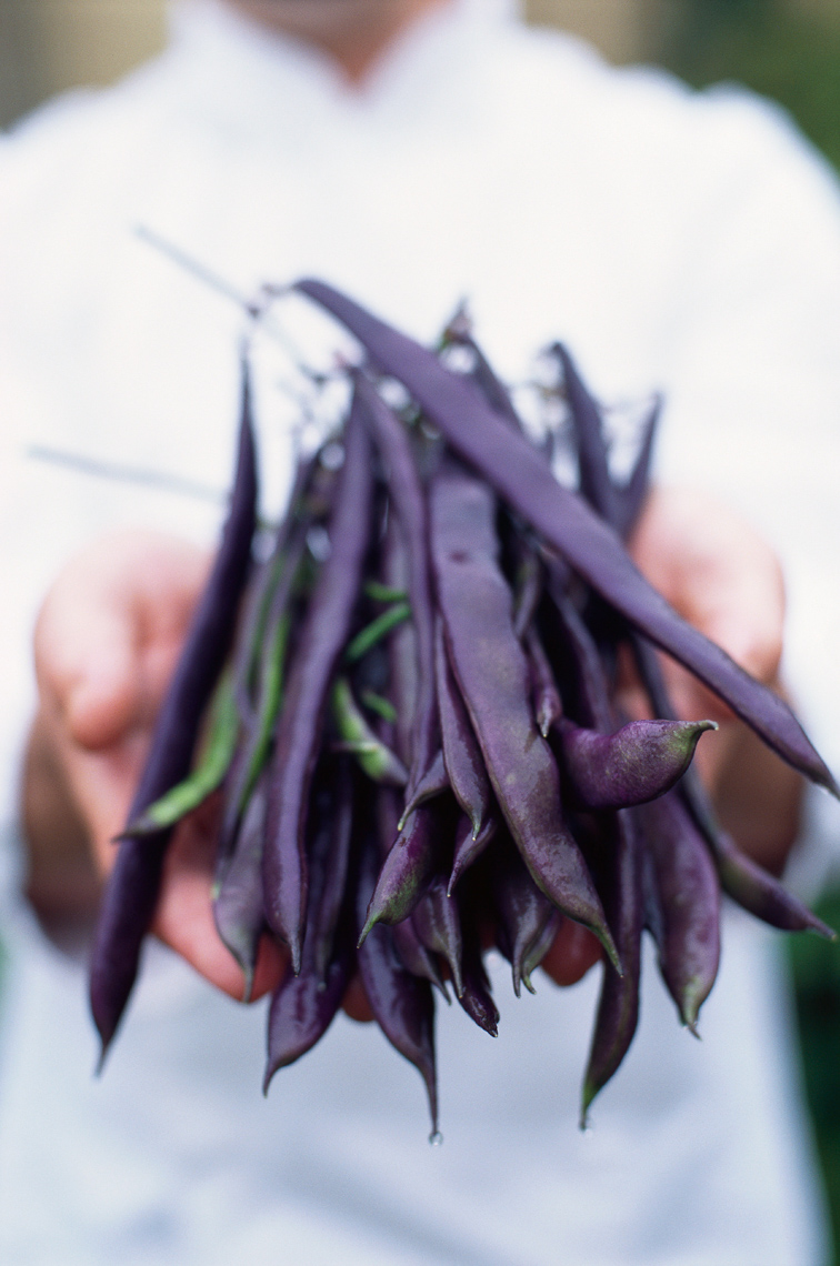 Chef hands holding dark green beans wearing chef  white coat San Francisco lifestyle photographer