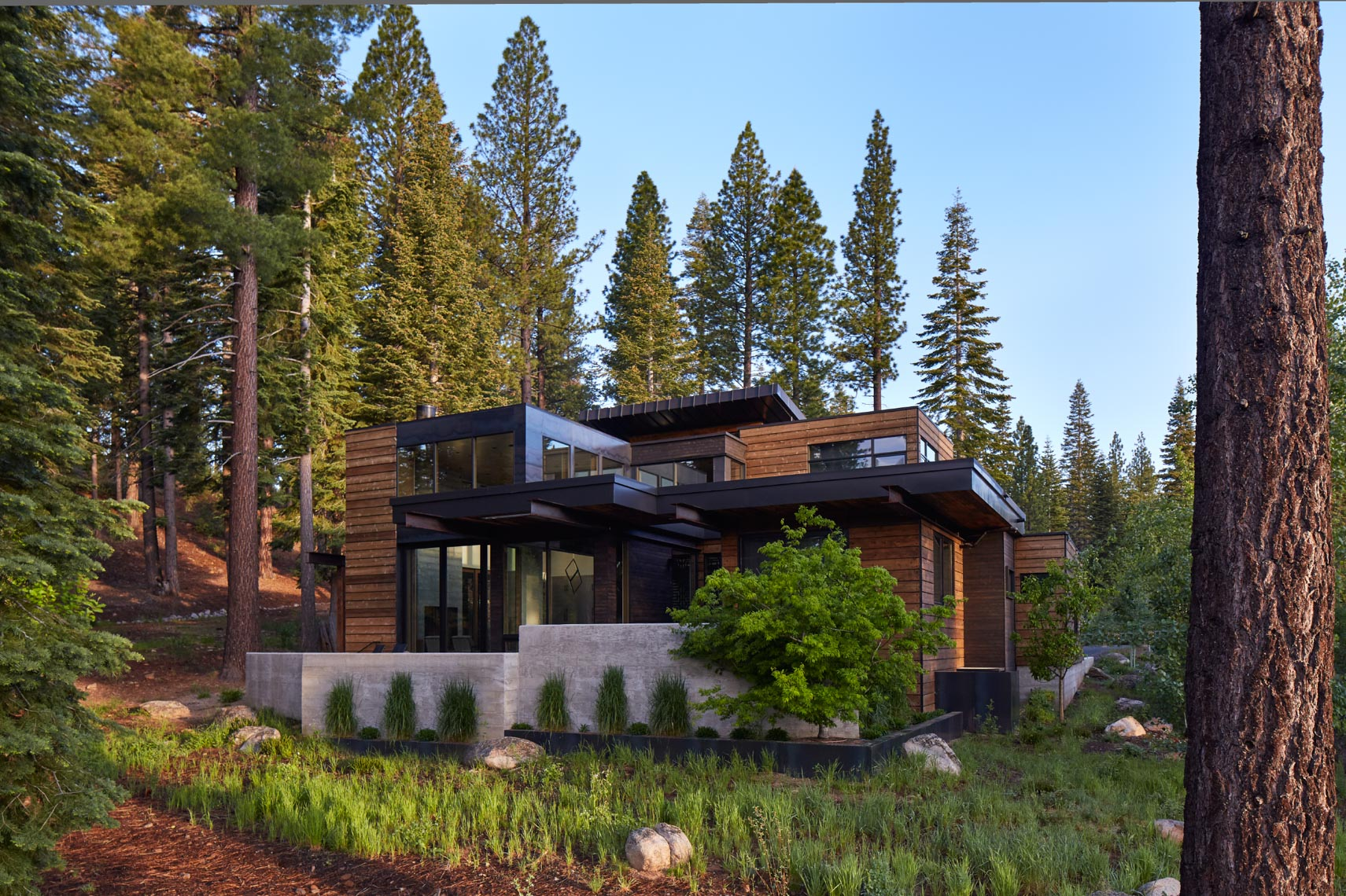 Modern wood and metal home in Tahoe mountains surrounded by green forrest