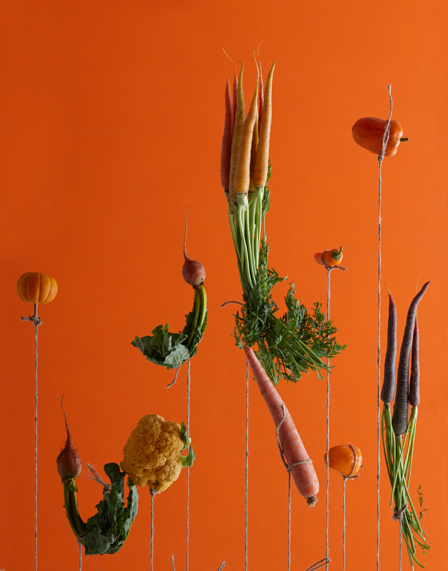 Hanging Veggies hilip Harvey Photography, San Francisco, California, still life, interiors, food, lifestyle and product photography San Francisco product photographer