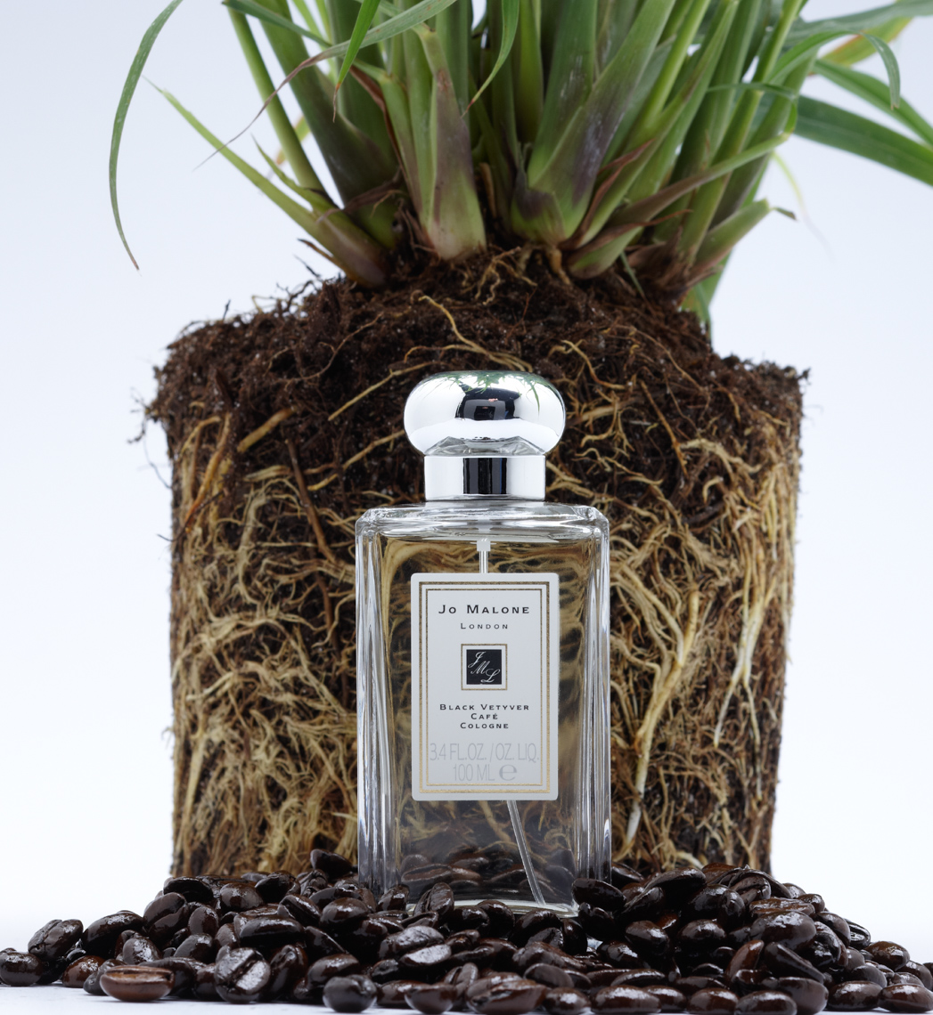 clear perfume bottle on black pebbles in front of rooted plant San Francisco product photographer