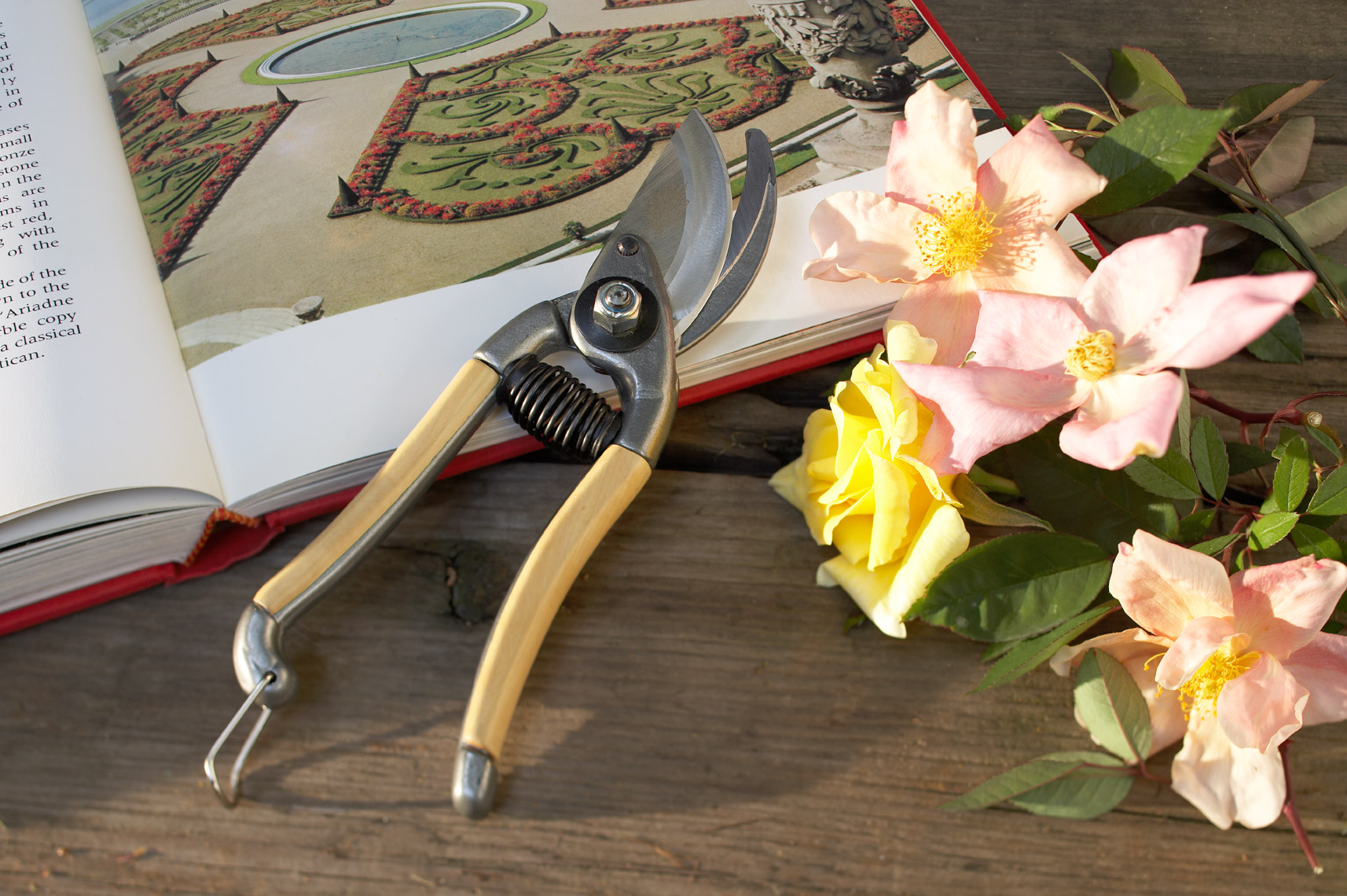 Felco pruners on book with pink roses