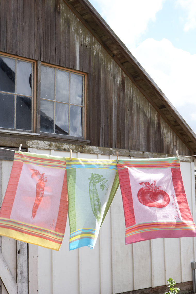 Kitchen towels with patterns hanging from clothesline near barn