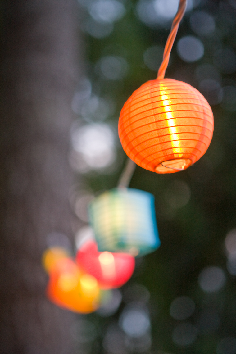 Paper lantern light string in forest