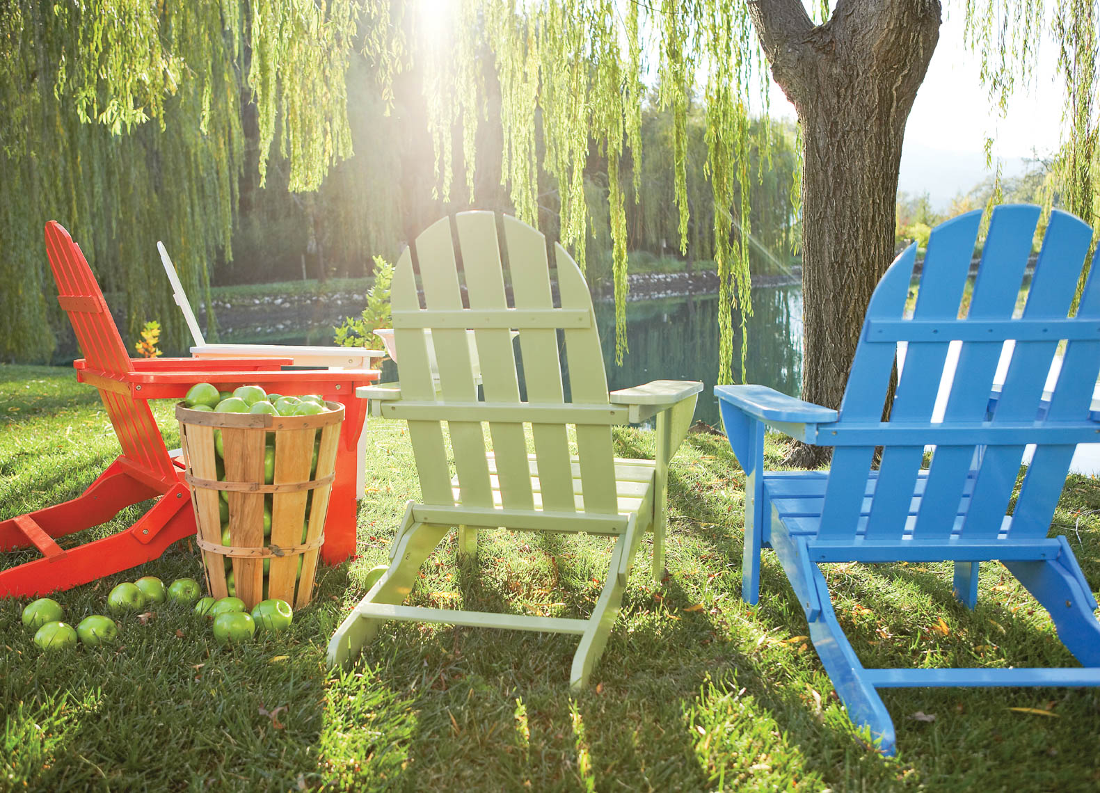 Red green and blue adirondack chairs in grass under willow tree