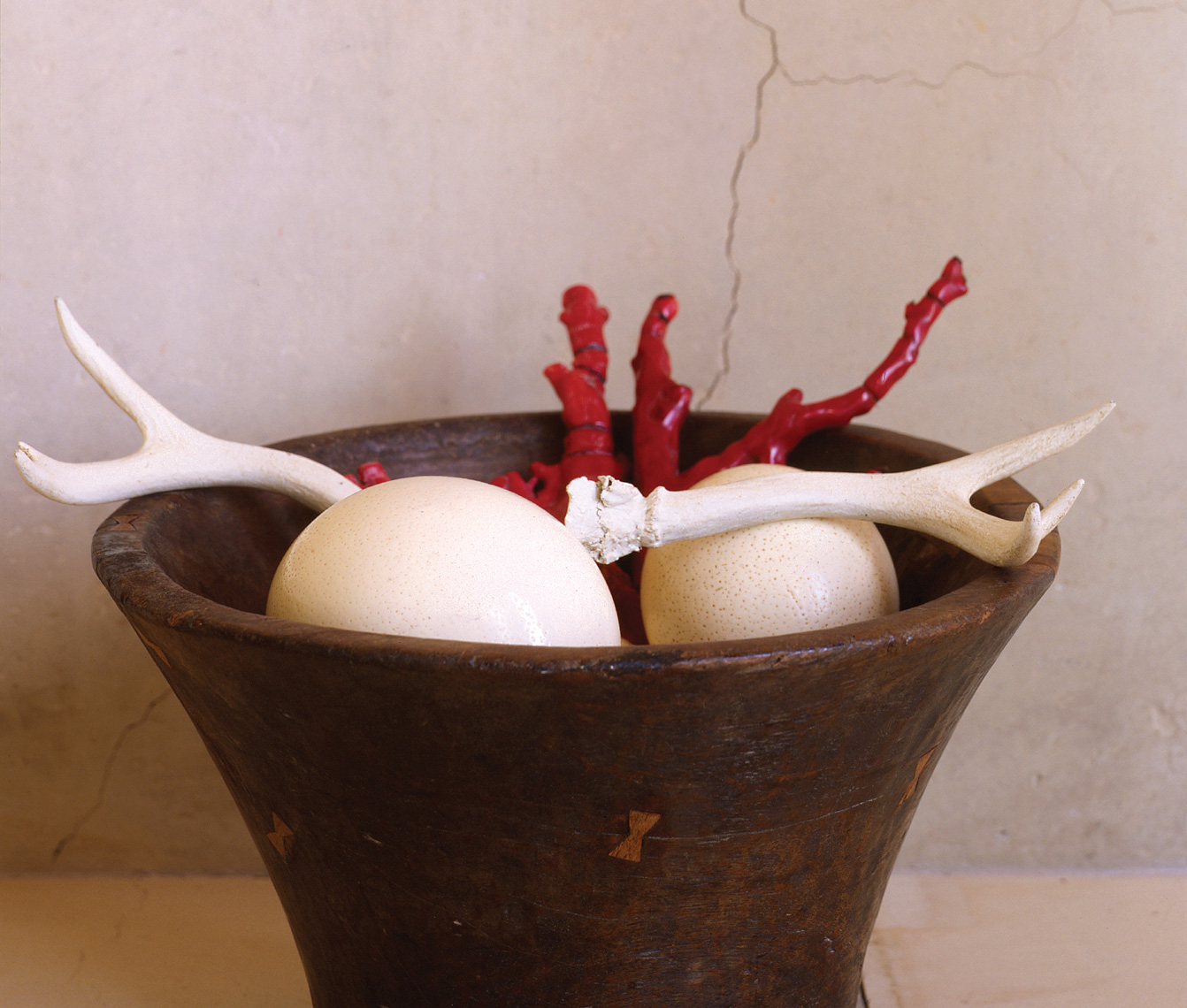 Horn and ostrich eggs in wood bowl hilip Harvey Photography, San Francisco, California, still life, interiors, food, lifestyle and product photography San Francisco product photographer