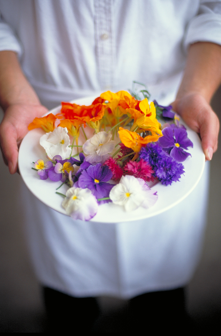 Chef holding white plate of colorful edible flowers